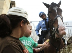 A Florida woman claims she punched a police horse in self defense!