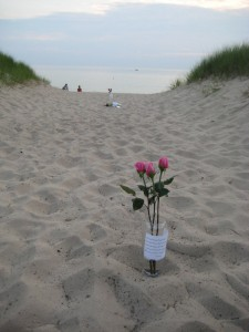 Grand Haven Beach Marriage Proposal!